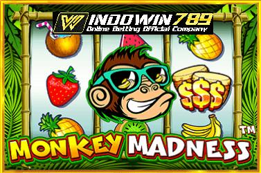 Trik Menang Besar Slot Monkey Madness Online